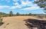 TBD Lonesome Dove Trail, Star Valley, AZ 85541