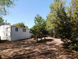 3306 Rim Lakes Drive, Overgaard, AZ 85933