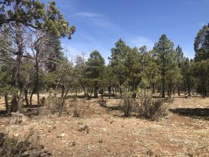 4024 Durango Drive, Happy Jack, AZ 86024