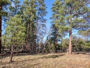 2011 Pine Canyon Drive, Happy Jack, AZ 86024