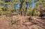 3738 Apache Trail, Pine, AZ 85544