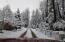 Beautiful in Winter Wonderland!!