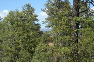 2403 E Big Forest, Payson, AZ 85541
