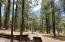 1836 QUAIL Trail, Forest Lakes, AZ 85931