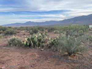 Parcel D W Brittlebrush Trail, Tonto Basin, AZ 85553