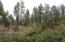 3109 E Game Trail, Payson, AZ 85541