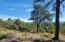 2602 E Feather Plume Lane, Payson, AZ 85541