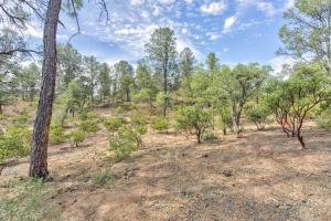 807 N Desert Mimosa Circle, Payson, AZ 85541