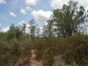 803 N Desert Mimosa Circle, Payson, AZ 85541
