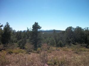 1606 W BEECH Parkway, Payson, AZ 85541