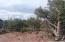 1213 W Wagon Trail, Payson, AZ 85541