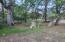 3924 N Bloody Basin Road, Pine, AZ 85544