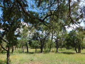 2149 Pine Crest Drive, Happy Jack, AZ 86024