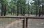 781 BILLS Loop, Forest Lakes, AZ 85931