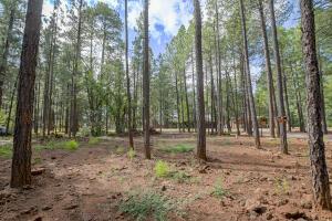 4310 Deep Forest Drive, Pinetop, AZ 85935