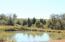 Beautiful pond!