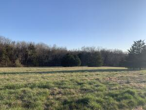 LOT 41.43 DOVER DR, HOLTS SUMMIT, MO 65043