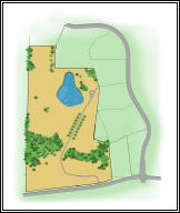 Graphic of the relationships of Rte K, Arrowhead Lake Dr, and the subject tract, with its interior driveway, creek and lake.