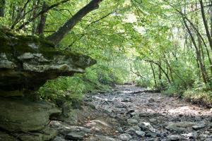 Scenic Hominy Creek runs through property.