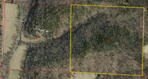 40ac vacant land parcel behind the primary parcel with the house on 40 ac.
