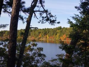 21 Fisher Point Road, Brewster, MA 02631
