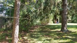 Great Depth to lot. Mature Evergreen Trees could be preserved for privacy, shade & natural setting!
