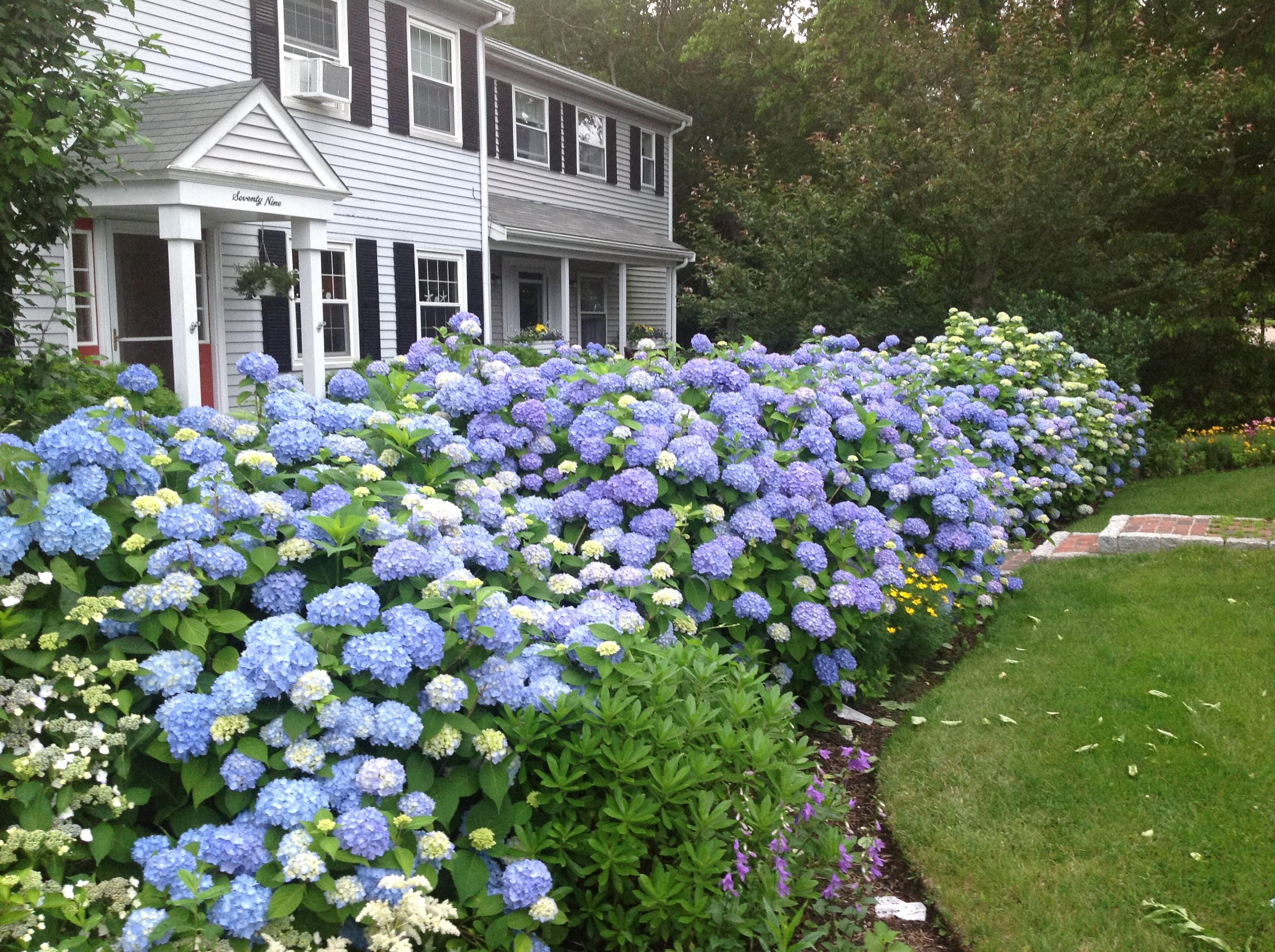 79 Squibnocket Drive, East Falmouth MA, 02536 sales details