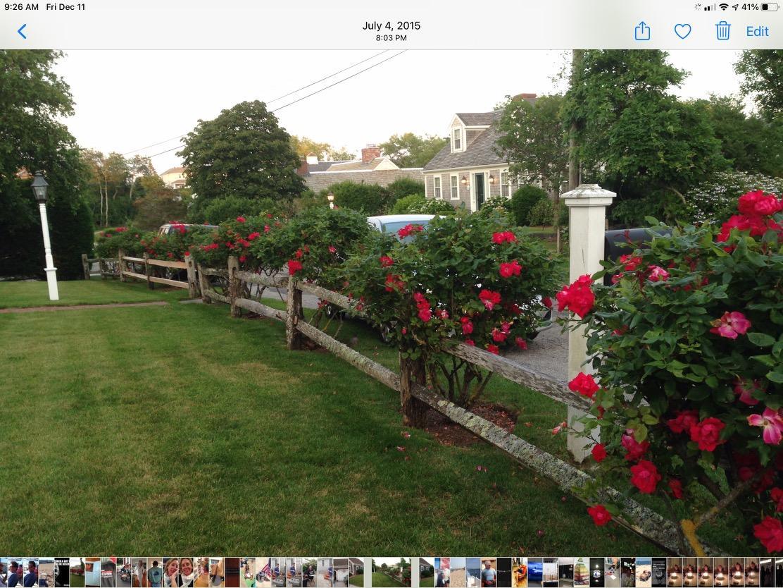 11 watch hill way chatham ma 02633 property image 6