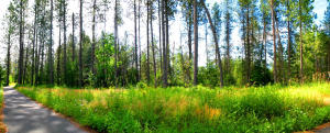 Lot 22 Northview Dr, Sandpoint, ID 83864