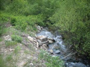 NKA Placer Creek Rd, Wallace, ID 83873