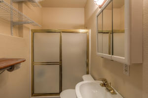Main level of garage is this shower full bath servicing the apt over the garage. Separate entrance