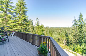 Upper main level deck overlooking incredible views of the tree tops