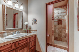 Stone tiles decorate the counter and walk-in shower
