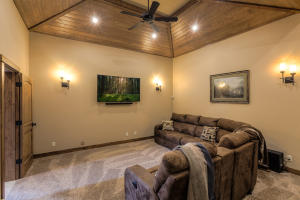 Lower level theater/family room