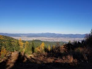 NKA Blossom Mountain