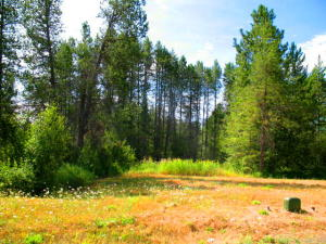 Lot 11 Northview Dr, Sandpoint, ID 83864