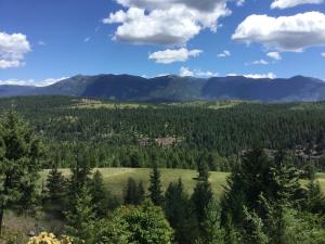 1118 Two Tail Rd, Bonners Ferry, ID 83805