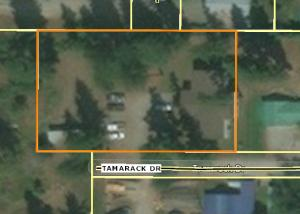 Aerial Zoomed in Tamarack