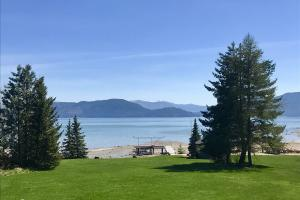 A level lawn, to gorgeous waterfront