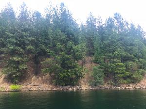 NNA E Coeur d'Alene Lake Dr