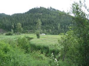 Seasonal Creek (2)