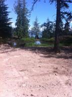 Pond/view
