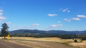 4852 W Sunny Slopes rd, Worley, ID 83876