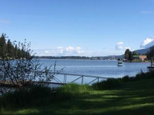 CIty Shoreline across the lake