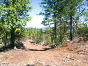 NNA Alder Creek Way