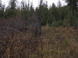 B3 L8-10 Pend Oreille Ave, Lakeview, ID 83803