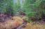 Smorgasbord Creek