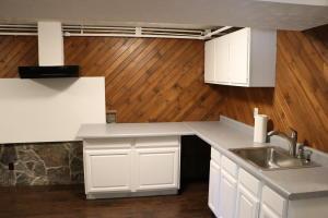 Lower level kitchen area