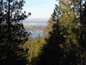 NKA S. Idaho Rd., Post Falls, ID 83854