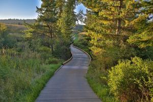 Picturesque Pathway